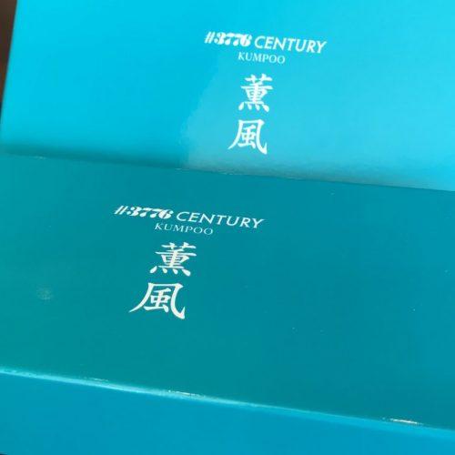 【限定:完売】プラチナ万年筆 ♯3776 CENTURY 薫風